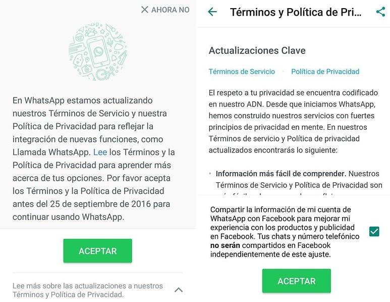 Términos y Política de Privacidad